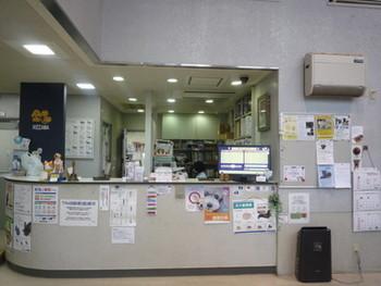 動物 病院 クレジット カード
